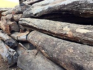 Rosewood or Blackwood
