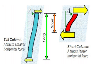 Short Columns Attracts more shear force compared to long columns