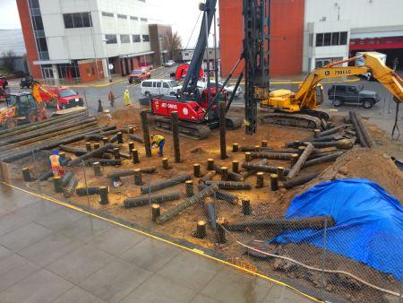 Timber piles