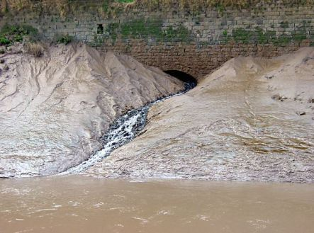 Silt Deposited by Canal