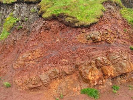 argillaceous rocks