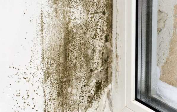Condensation on walls near the window