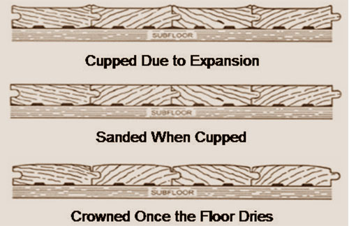 Cupping and Crowning in Hardwood Floors