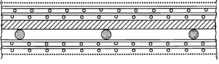 Cross section of the skeletal armature method