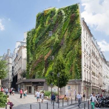 Oasis of Aboukir, Paris: 25-meter-tall green wall