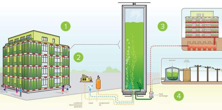 Elements involved in SolarLeaf Bioreactive Facade