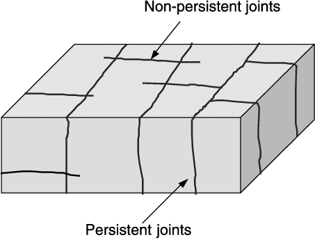 Persistent and non-persistent joints.
