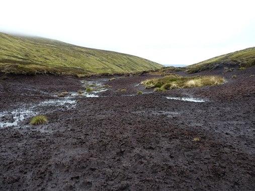 Low shear strength soil