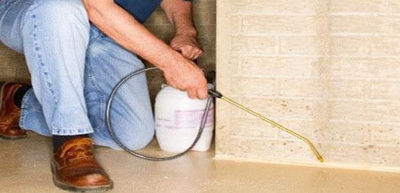 Anti-Termite Treatment in Existing Building