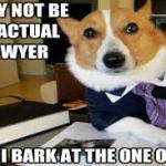 non lawyer im