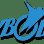 logo – skybound logo (landscape)