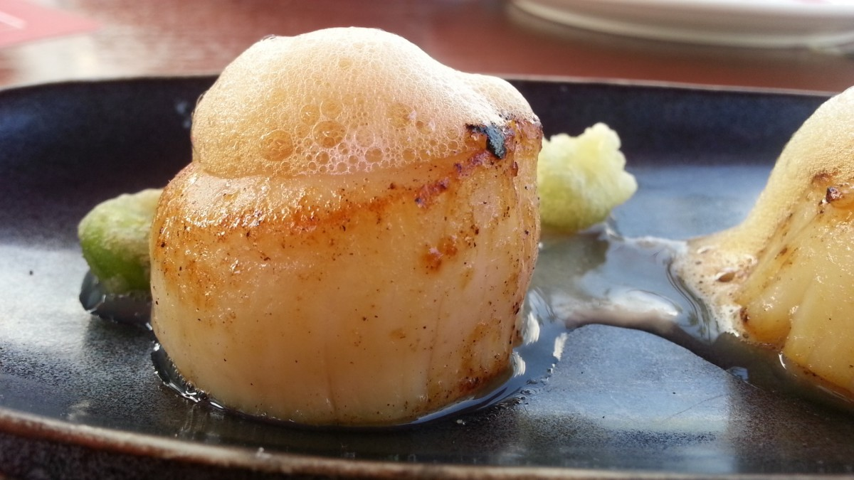 Best scallop recipe