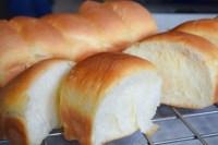 Japanese milk bun