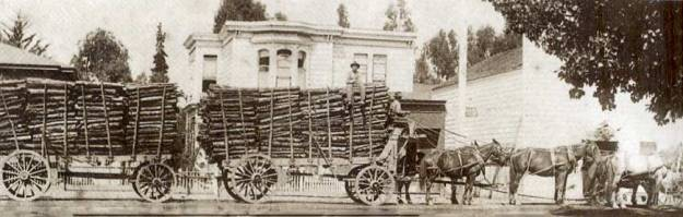 Serious amounts of oak bark being transported by horse and cart (www.mendorailhistory.org)