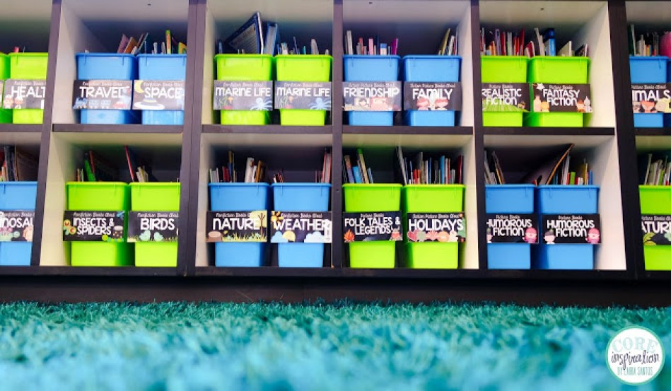 Core Inspiration classroom library shaggy rug.