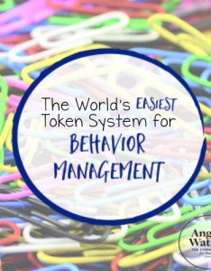 Be sure that after you pull  token from the bag put it back into your organizer rather than in empty out every week month also world   easiest system for behavior management rh thecornerstoneforteachers