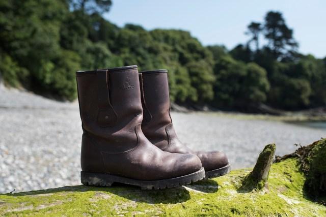 Summer Dog Walking Essentials | The Cornish Dog