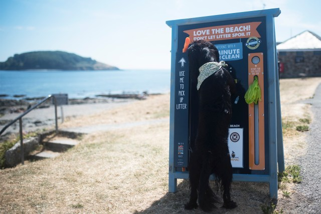 Hannafore Beach | The Cornish Dog