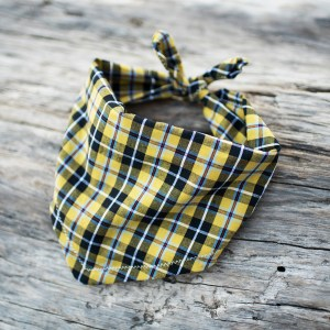 Cornish Dog Bandana | The Cornish Dog
