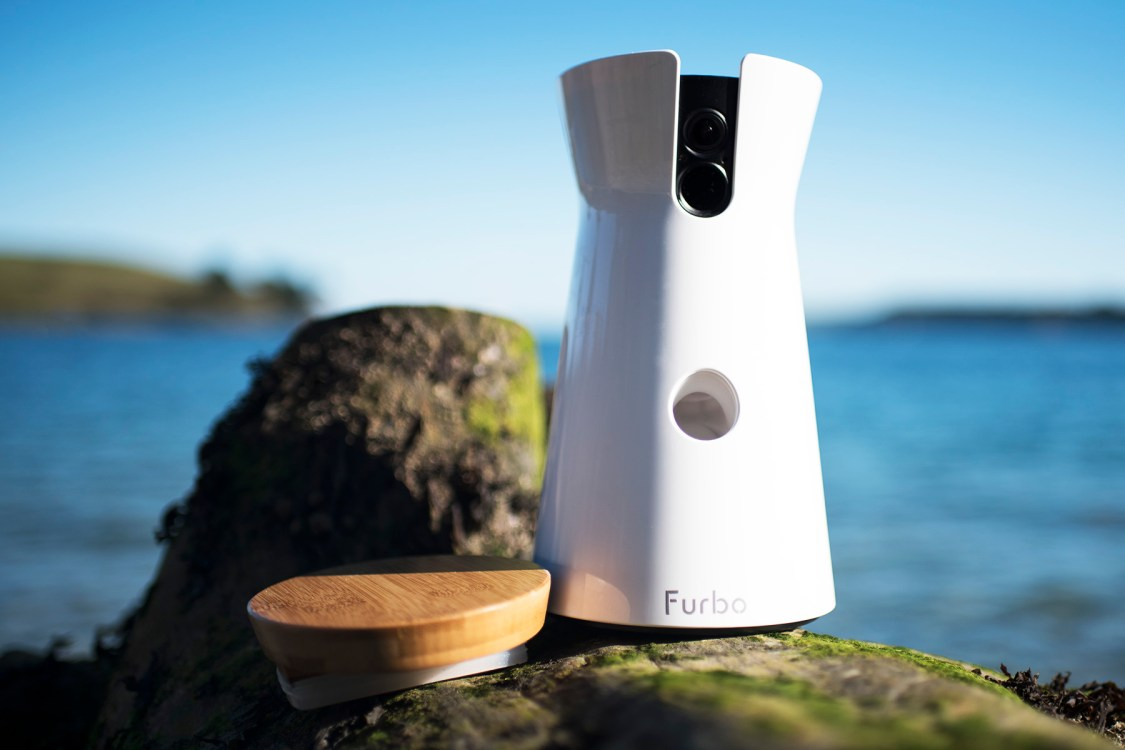 Furbo Dog Camera | The Cornish Dog | AD