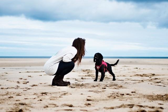Our Favourite Winter Beaches   The Cornish Dog