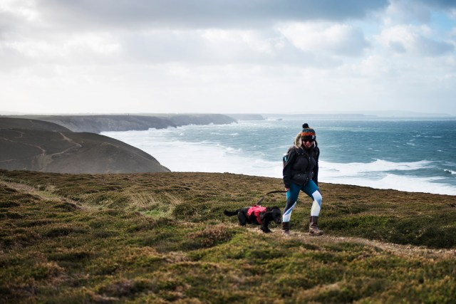Wheal Coates | The Cornish Dog