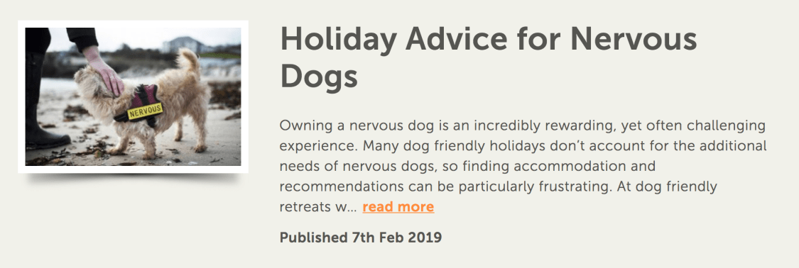 Dog Friendly Retreats | The Cornish Dog