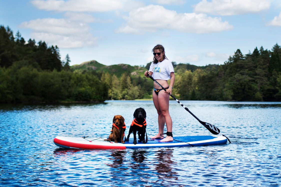 Owning a Dog In Your Twenties   The Cornish Dog