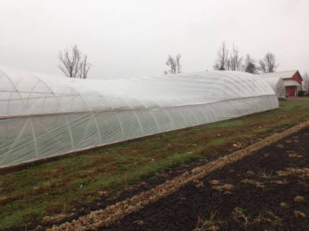 Storm damaged hoop house.