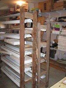 Seedling molds on racks