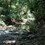 playa montezuma waterfall