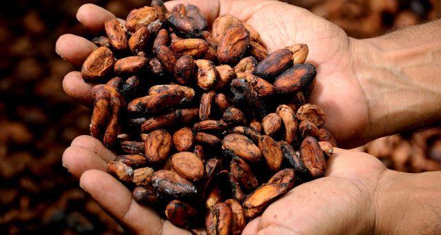 cacao costa rica ceremony