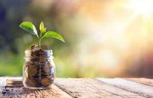 Prosperity Fortune Jar Plant Environment Costa Rica