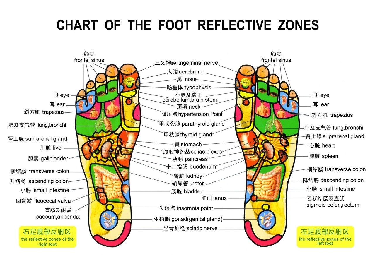 foot massage therapy diagram the titanic parts chart costa rica news