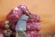 agriculture costa rica