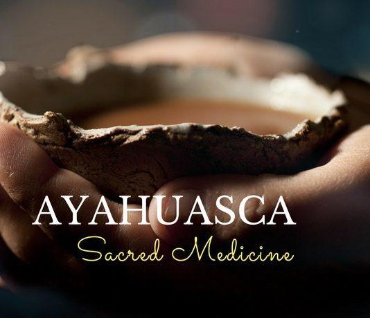 Ayahuasca costa rica