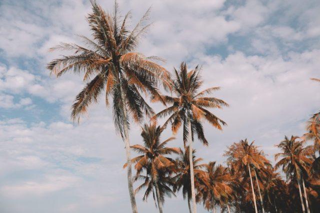 travel costa rica