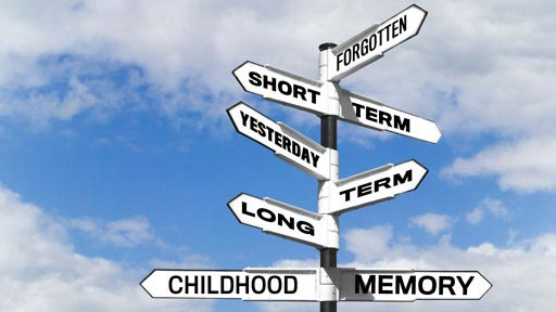 There are 2 main types of human memory: short-term and long-term.
