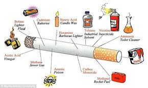Effects of the cigarette