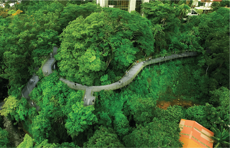 Naturbanas Routes