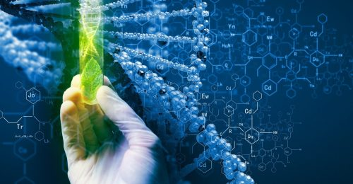 Epigenetics Future of Medicine