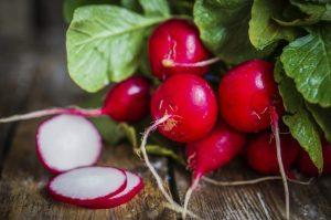 Slices of radish
