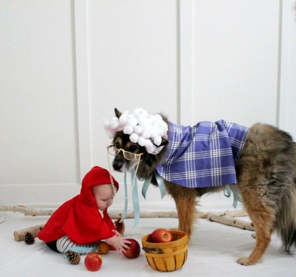 Delightful Diy Dog Halloween Costumes - Of 4