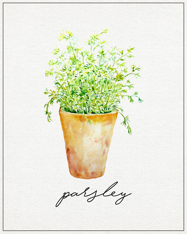 Free Kitchen Herb Wall Art Printables