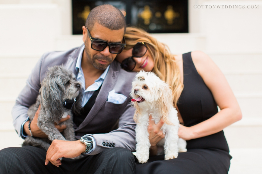 glamorous couple with cute dogs