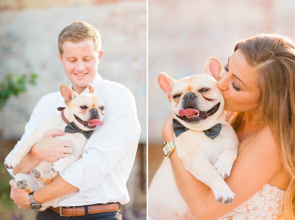 french bulldog engagement session