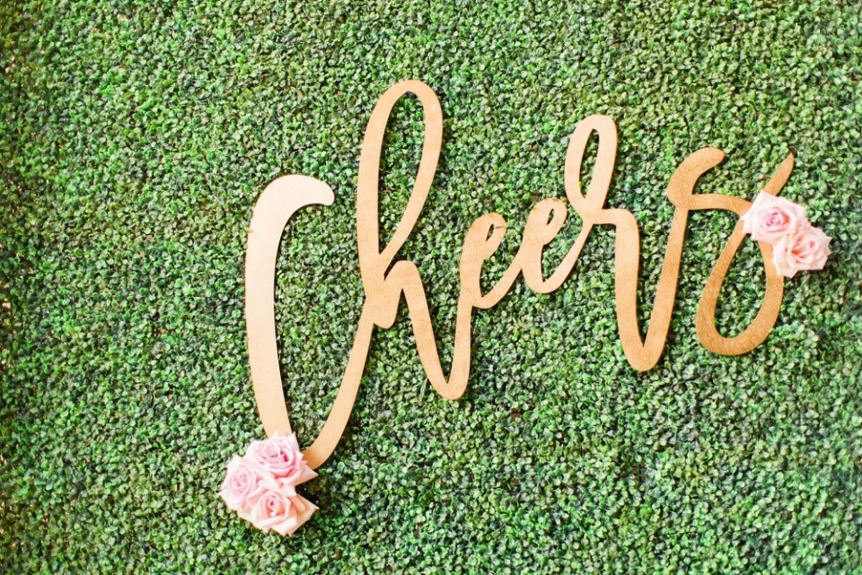 charming-southern-wedding-houston-photographer_0087