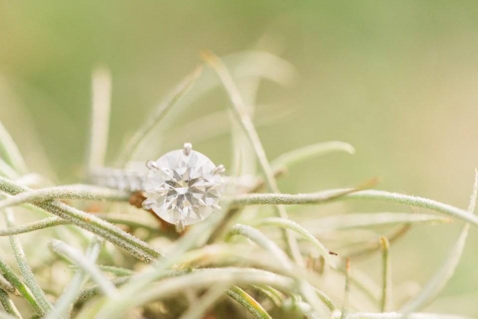 houston-engagement-photographer_0016