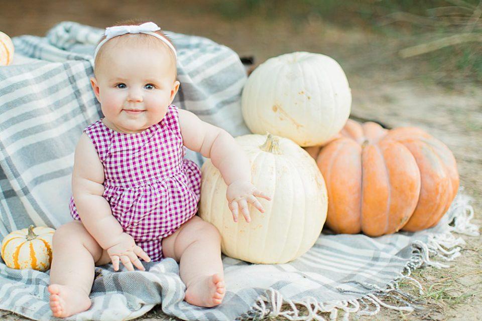 houston fall baby mini
