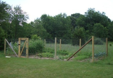 Small Vegetable Garden Fencing